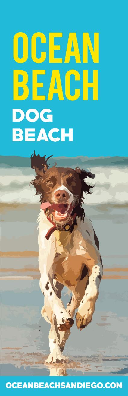 Ocean Beach dog beach banner design by Ashley Lewis